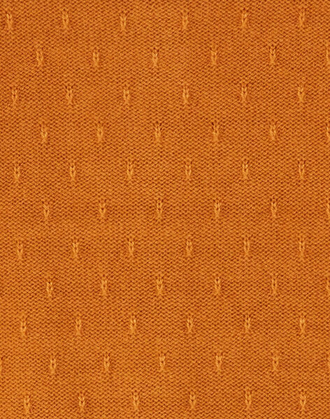 Light brown CARDIGAN VOUDAETTE / 20H2PFY1CAR804