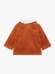 Baby boy's velvet jacket with embroidered teddy BIOCTAVE / 21H1BGD1VES809