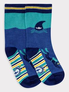 Blue Socks TEFOTAGE / 20E4PGD1SOQC221