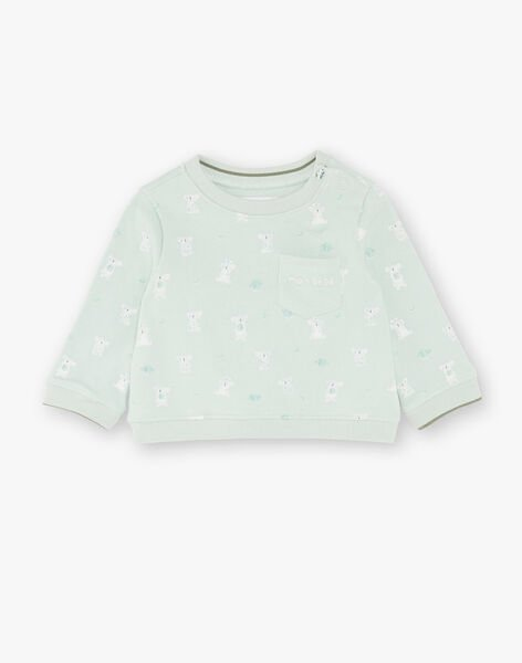 Sweat shirt printed green and ecru ZAASHER / 21E1BG71SWEG619