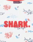 White shark print sweatshirt colorful boy boy child ZISOULAGE / 21E3PGT1SWE000