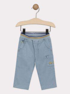 Greyish blue pants SAKURTY / 19H1BG61PAN205