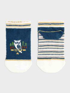 Navy Low socks SACHAUSAGE / 19H4PG21SOB714