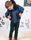 Baby boy steel blue hooded parka BAMATAGE / 21H3PGC1PARC202
