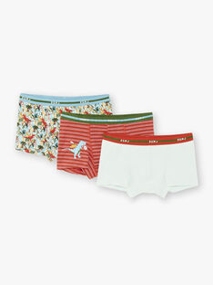 Set of 3 boxers for boys ZEBOXAGE / 21E5PG32BOX403