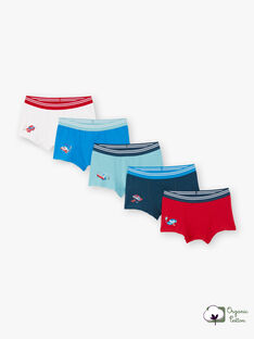 Boy's 5 assorted boxer shorts with car motifs BEMAINAGE / 21H5PG81BOXC232